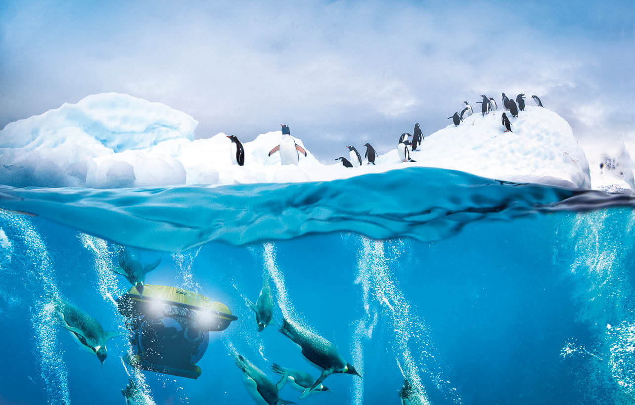 Penguins gather on top of an iceberg and swim underneath in the Antarctic as a U-boat submarine passes by underwater